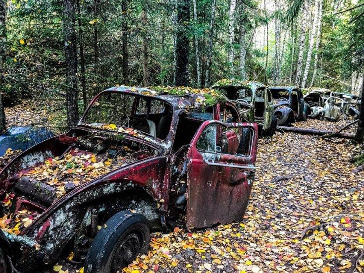 autótemető, háttérben Bogarak, őszi kép