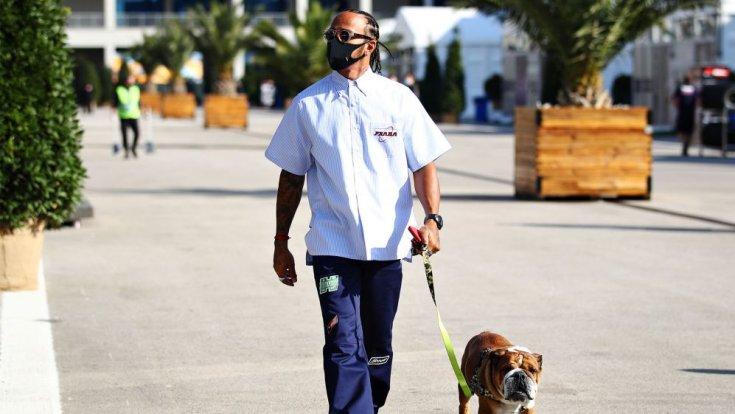 Hamilton kutyát sétáltat a Forma-1-es paddockban