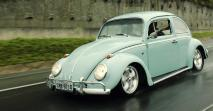 California love – A VW Bogarak sorsa Kaliforniában